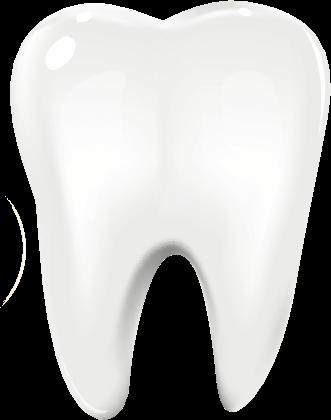 Port Jefferson Smiles-Karen Halpern DMD, MS-tooth